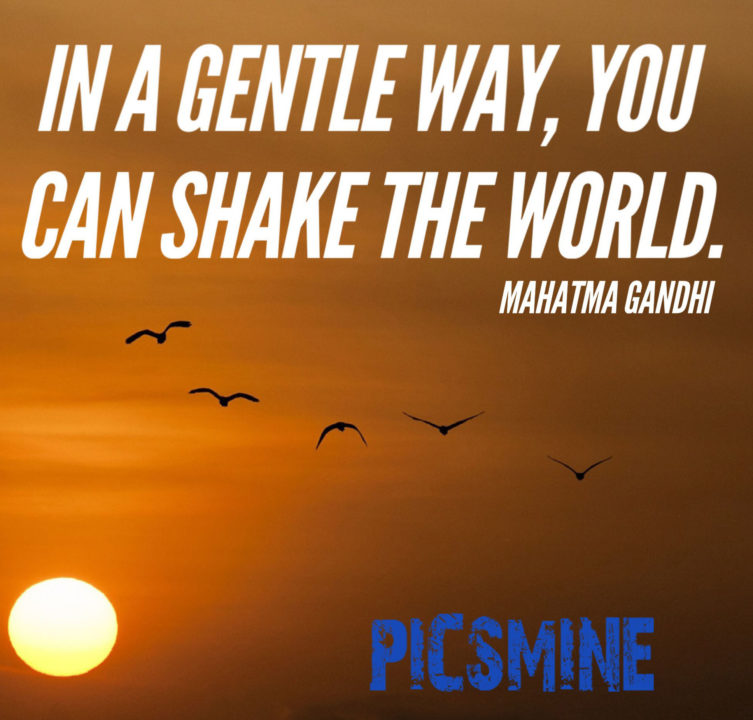 Quotes Inspirational in a gentle way you can shake the world